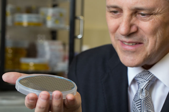 Dr. Vertes holds a silicon wafer containing multiple the REDIchip devices, a new device that can detect ultratrace amounts of ch