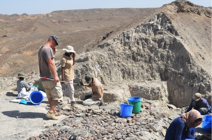 Archaeologists study the sediments at the Bokol Dora site